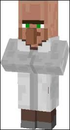What is his BFF in Minecraft called?