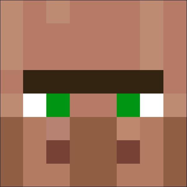 Quiz Minecraft Pro Test