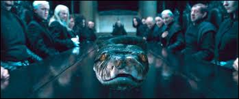 Who is the snake of Voldemort?
