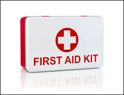 The band First Aid Kit comes from :